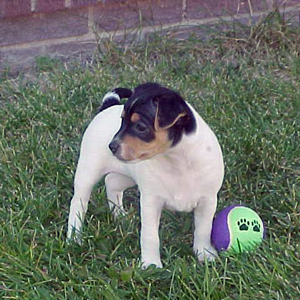 Emma at 6 weeks